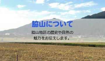 脇山について
